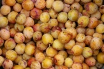 vruchten-mirabellen.jpg